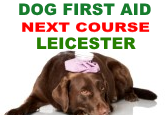 Dog First Aid Courses